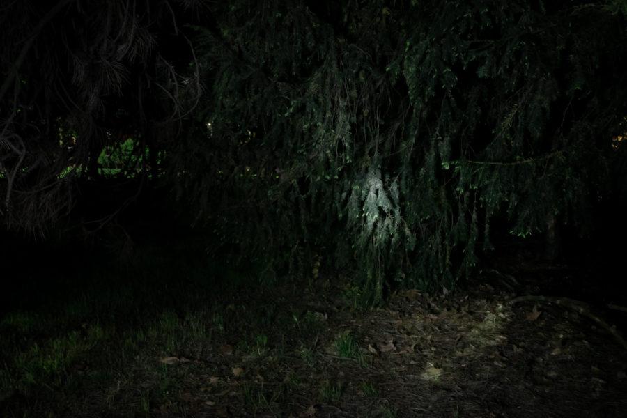 Una corrente li trascinava nella notte